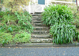 Steps in Bernice's Garden