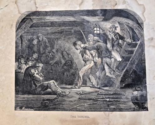 'The Tender'