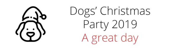 Dogs' Christmas Party 2019 Result