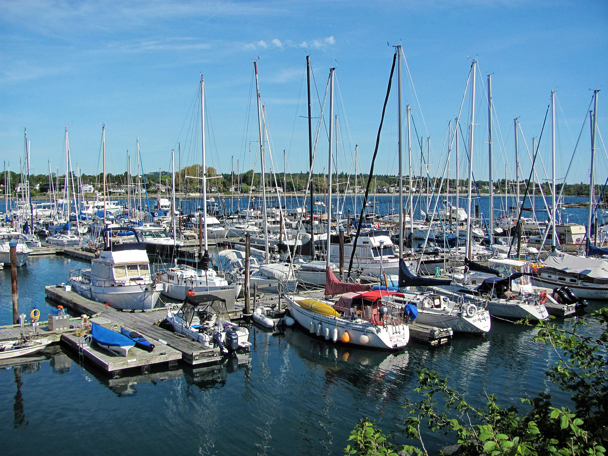 Oak Bay Marina