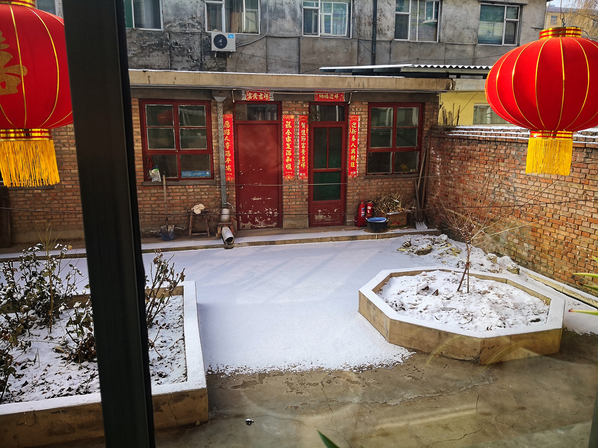 Snow in mother's backyard
